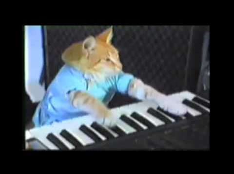 Classic Leroy Jenkins by Playhim Off Keyboard Cat